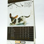 Detalle calendario 2010 Dadú estudio